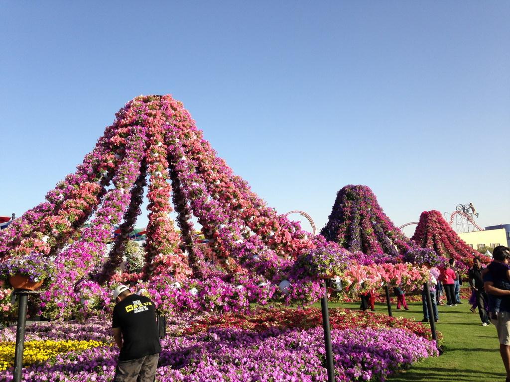 Dubai miracle garden парк цветов